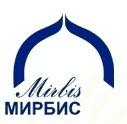 Высшая школа бизнеса «МИРБИС»